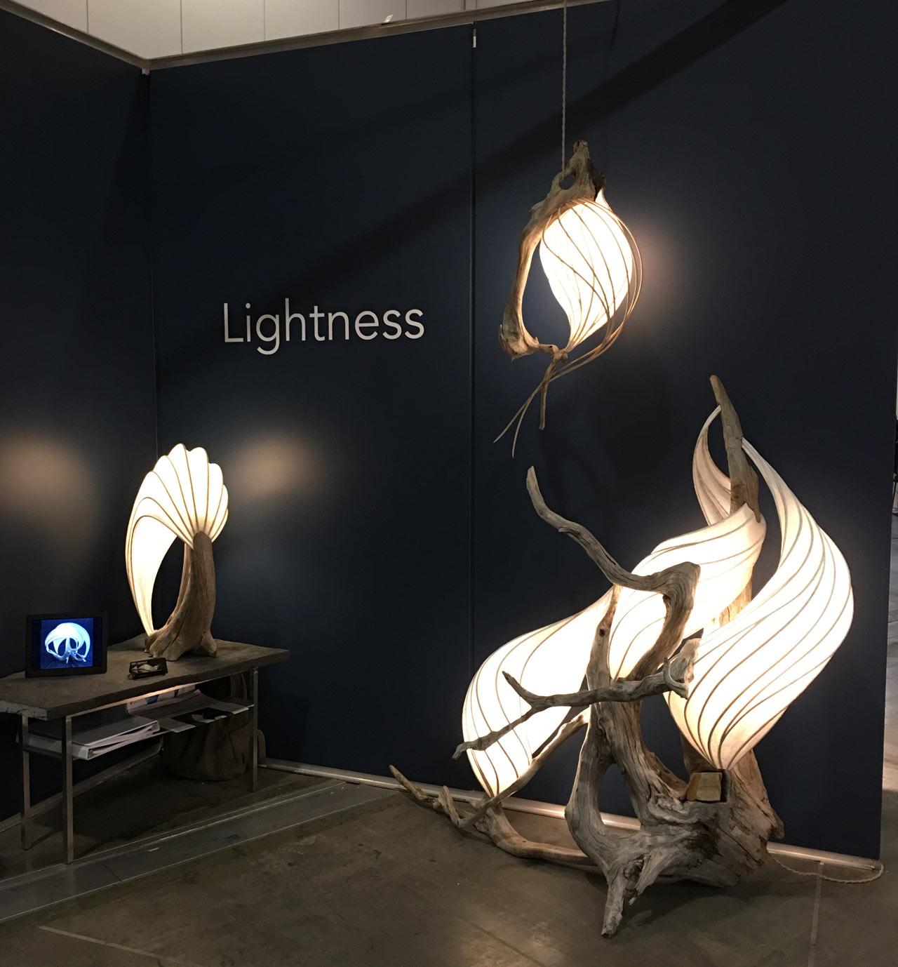 lightness-ids